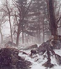 winter scene along bonnechere river