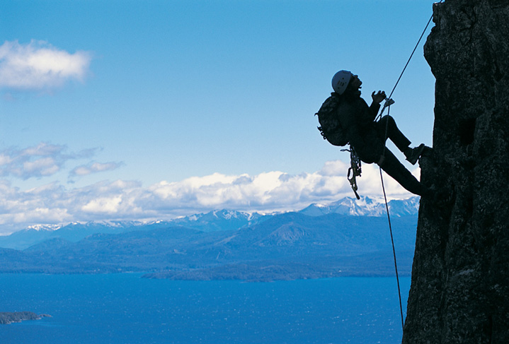 Climb above the Treeline in your sales career