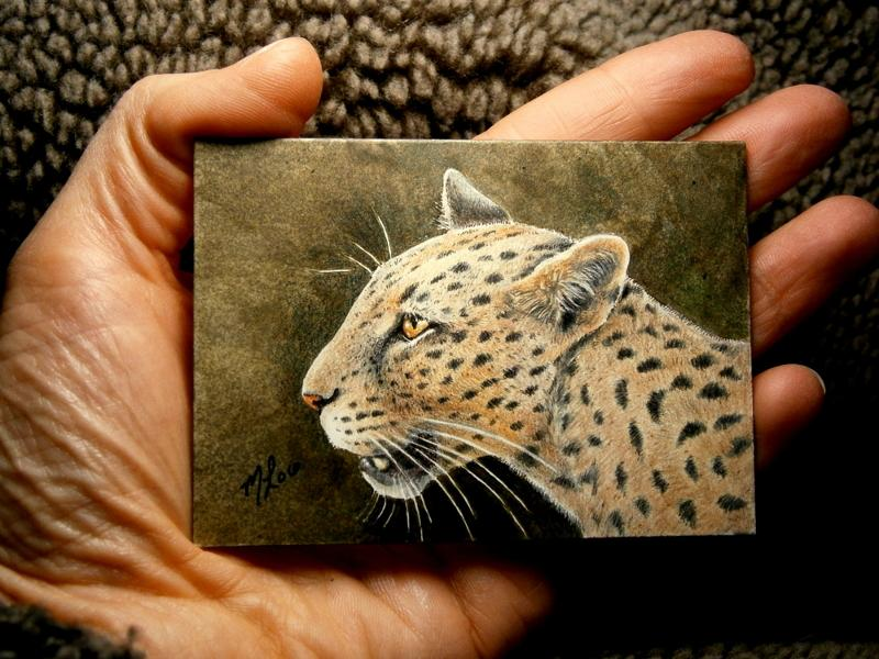 Leopard ACEO