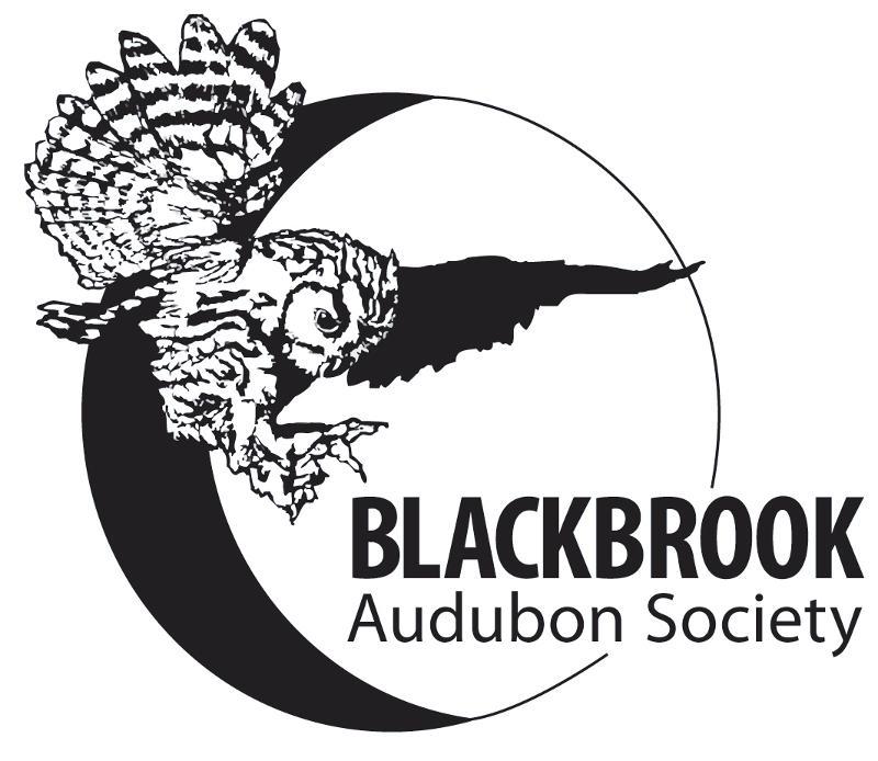 Blackbrook Logo