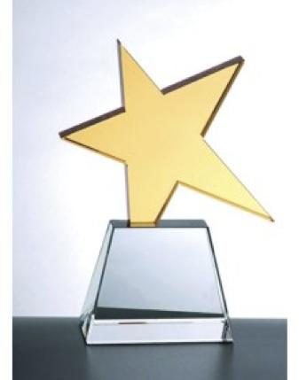 Star Developer Award