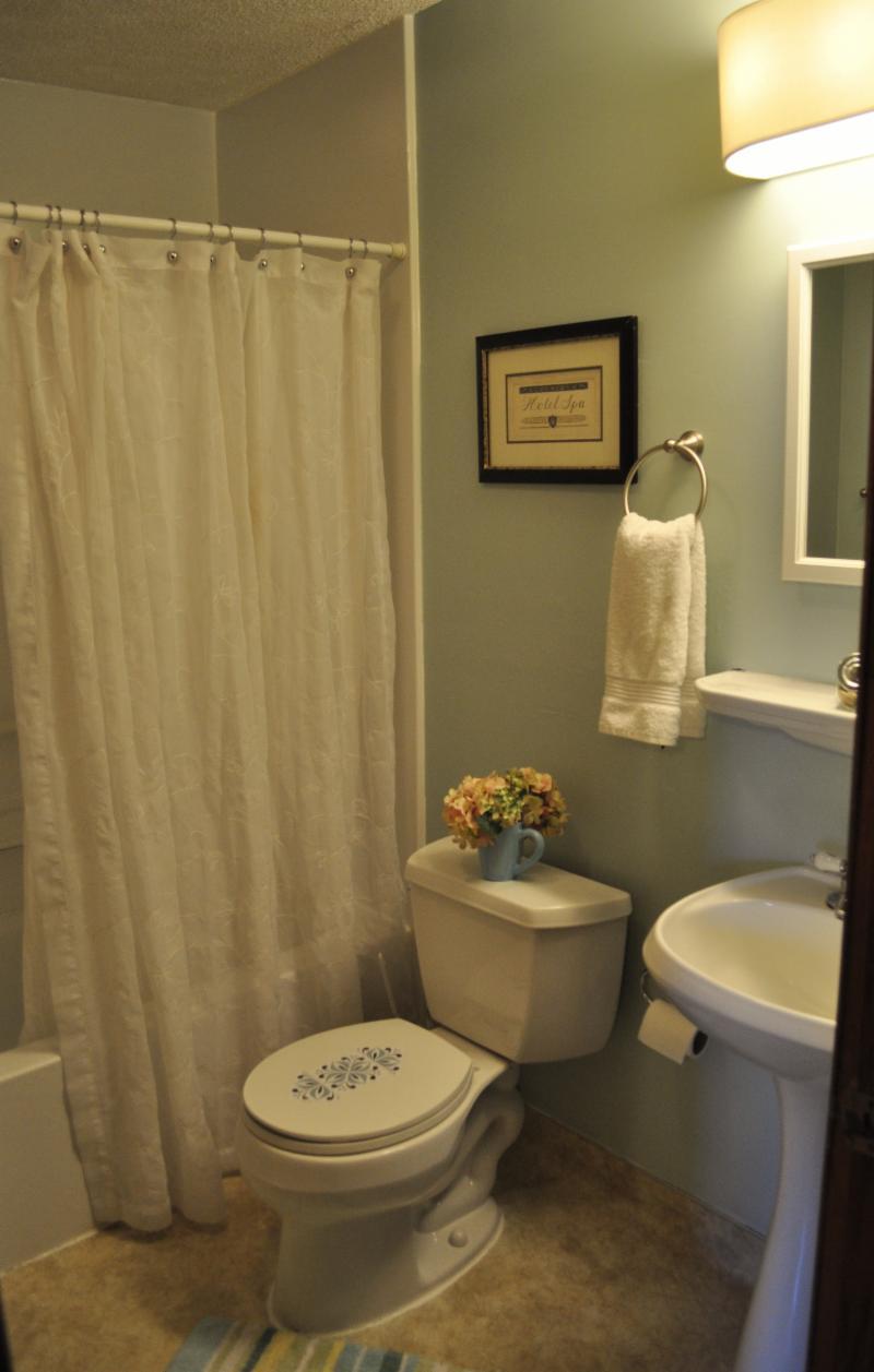 Bathroom Vanity Light Refresh Kit : Lighting Simply Staged, LLC