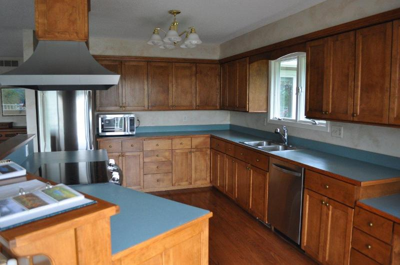 Orwell Kitchen Before