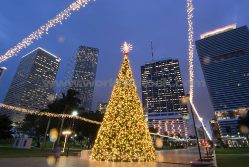 Christmas tree- Bayfront Park