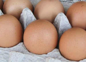 Spring is the Season for Pastured Free-Range Eggs
