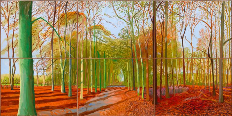 Vibrant woodland