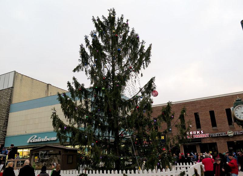 Scrawny town Christmas tree
