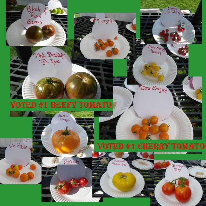 Winners of 2011 TomatoFest