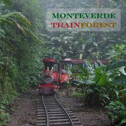 Trainforest