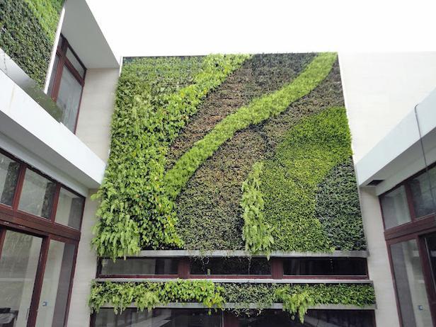 Living Wall Gardening Gardens Plants