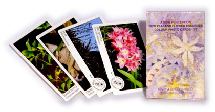 NZNP FE Cards