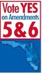 Amendments 5 & 6