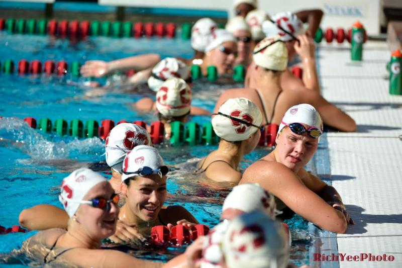 Stanford women swimmers - 1-31-15