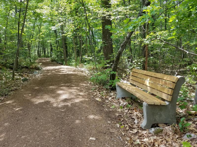 OHPS bench in woods