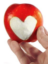Apples are one of the great weight loss foods