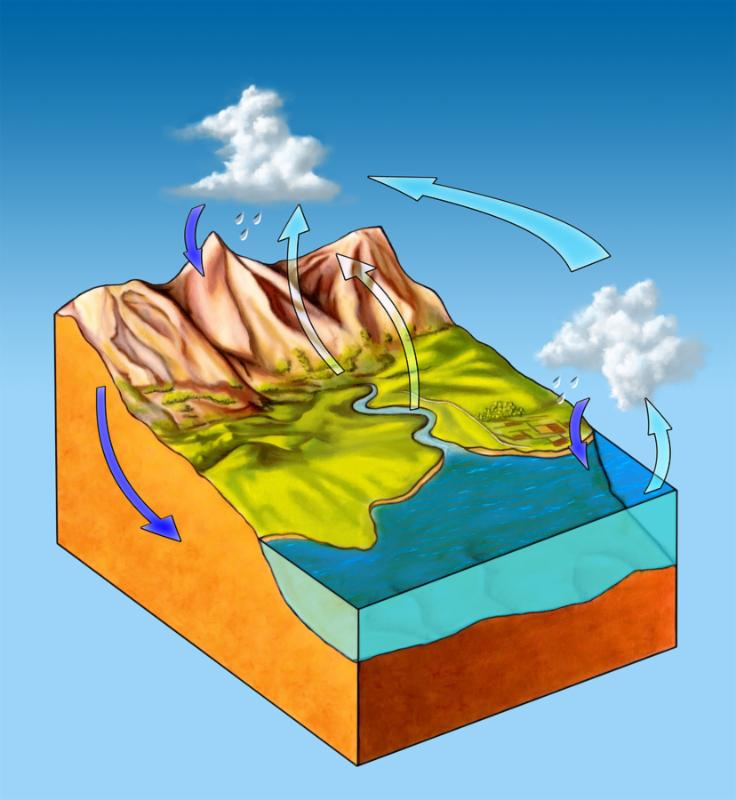 Water cycle diagram on a landscape section. Digital illustration.