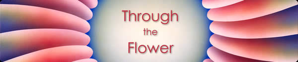Through the Flower News