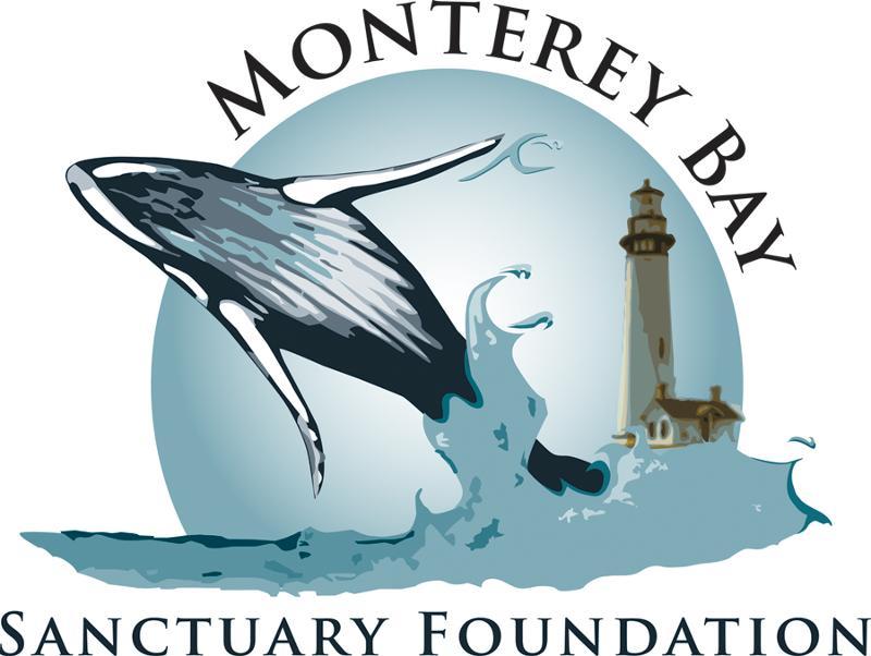 MBSF new logo