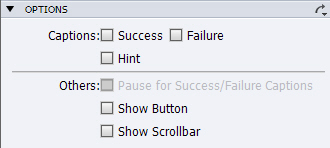 Adobe Captivate: Options deselected