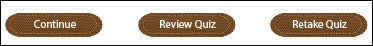 Adobe Captivate: Retake Quiz Button.