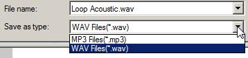 Export audio format options.