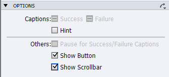 Adobe Captivate: Scrolling Text Option.