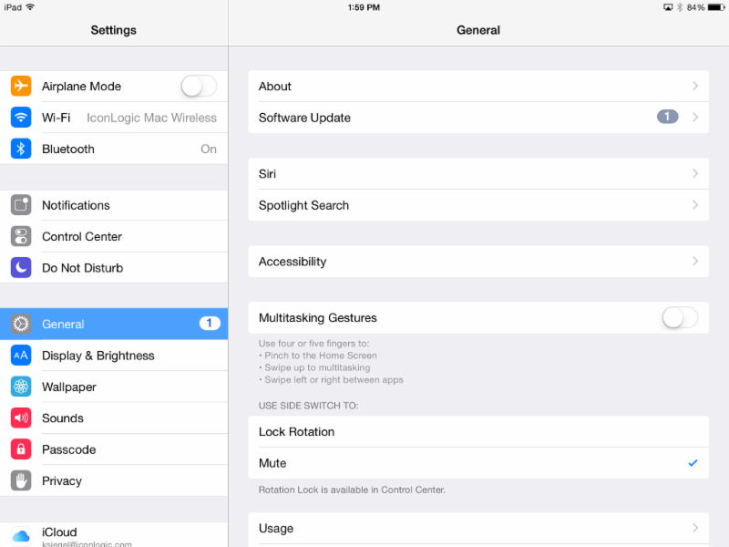 iPad: Settings Screen