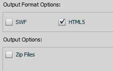 HTML 5 Option