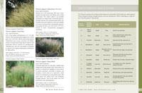 Catalog Page & Panicum Quick Guide