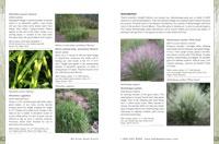 Catalog Descriptions
