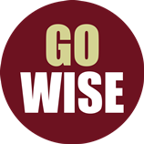 New Wise Logo
