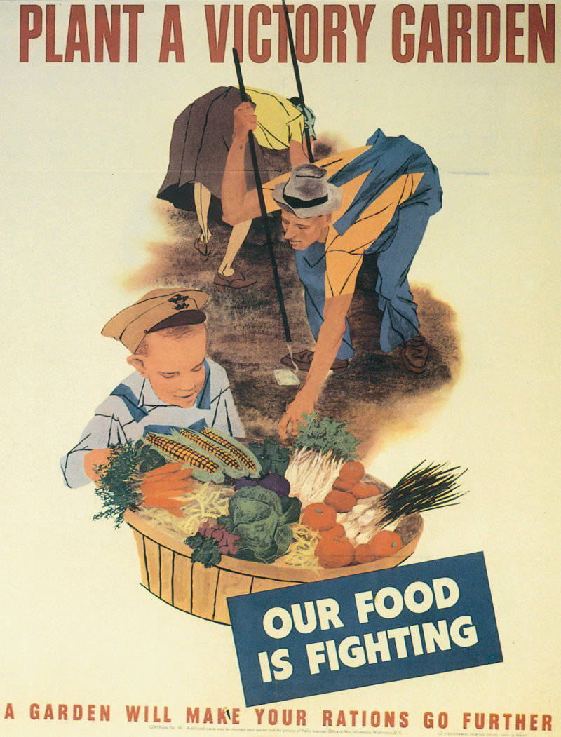 A Grassroots Food Revolution U2013 The Modern Victory Garden