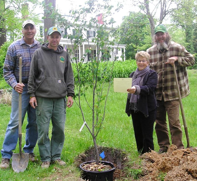 Manchin gives praise for tree planting