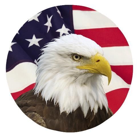 AFG Eagle