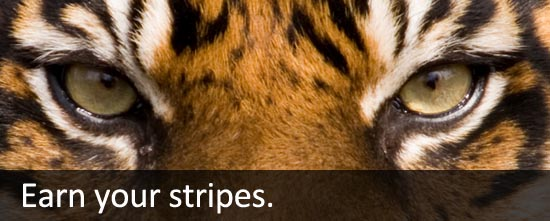 Earn your stripes.