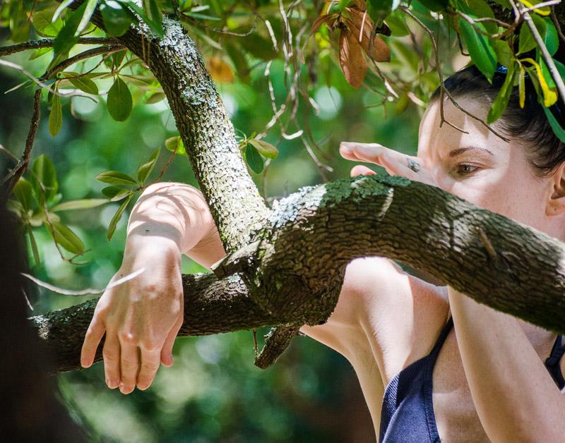 tree dancing