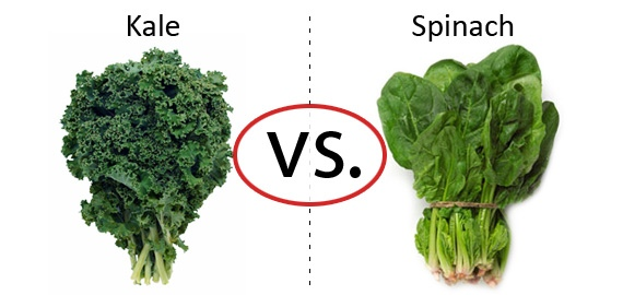 kale vs. spinach