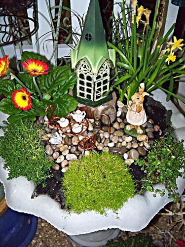 Miniature Garden in Bird Bath