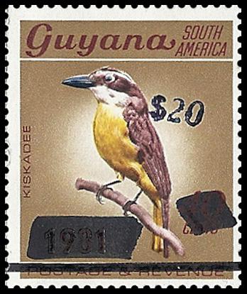 Guyana Prov 03