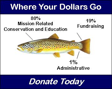 Where Your Dollars Go - Donate 2011