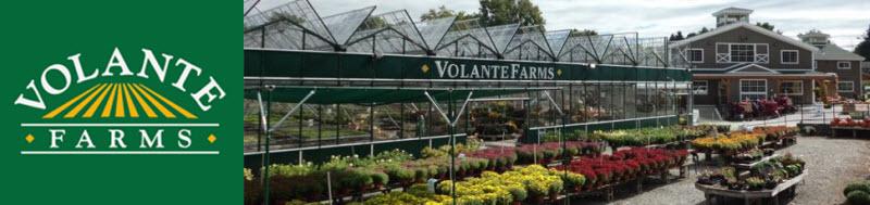 volante farms logo