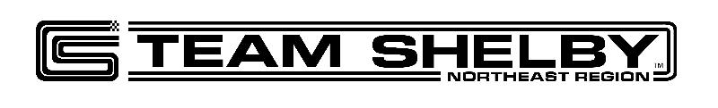 TS Logo Rectangle