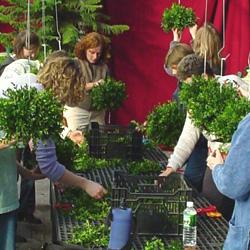 Ward's workshop 2005