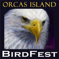 BirdFest logo 2015