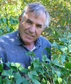Peter Del Tredici