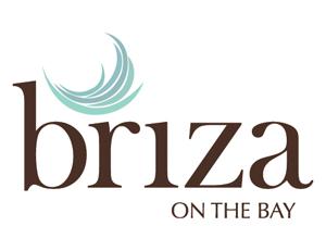 Briza logo