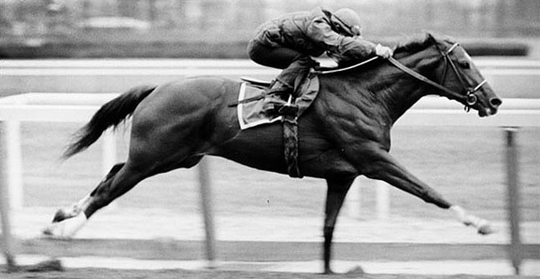 Secretariat Photo BW