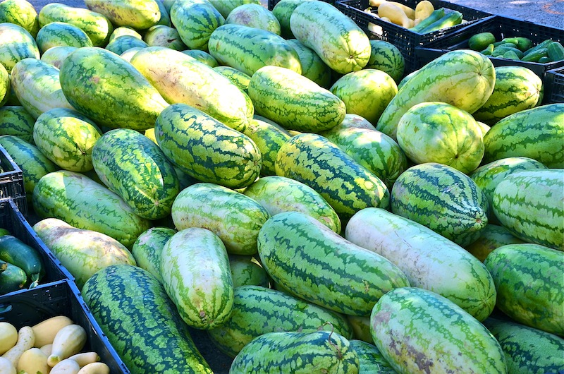 Watermelons in October
