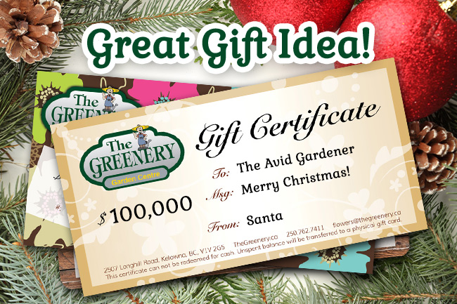 Greenery Gift Certificate Idea
