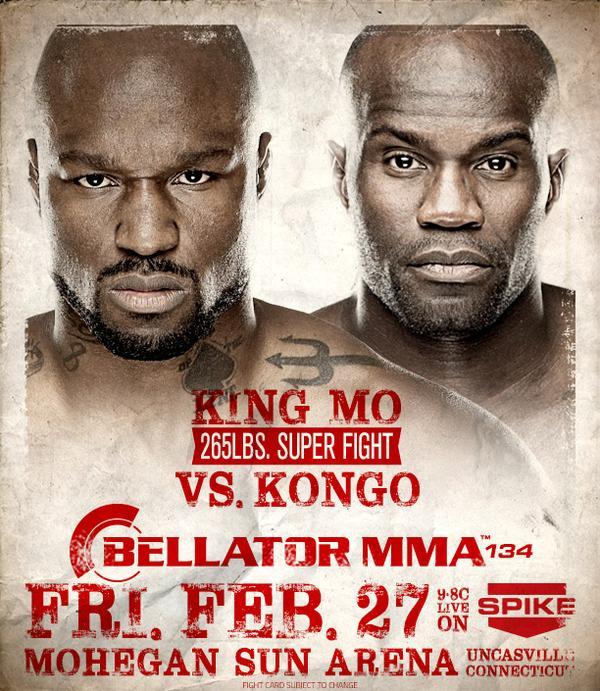 Bellator MMA 134